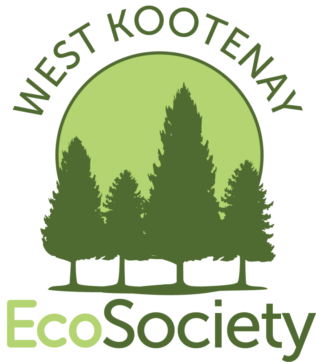 EcoSociety logo 2012 square.png