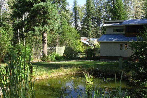 Pond Paradise Winlaw.jpg