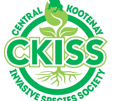 ckiss_logo_1.5__desktop_publishing.jpg