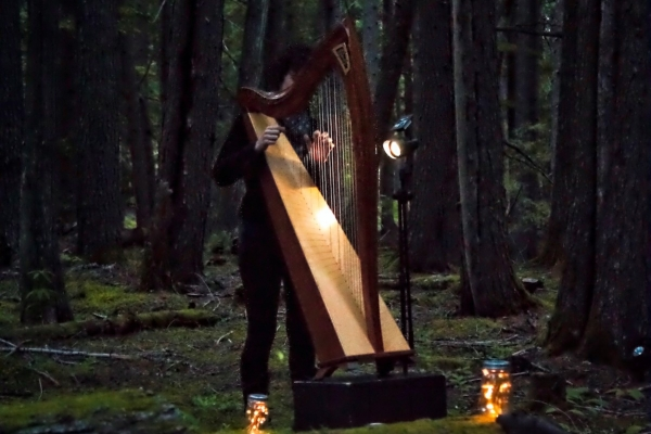 Gina Begin- Between a Lake-High Place - Harp (2).jpg